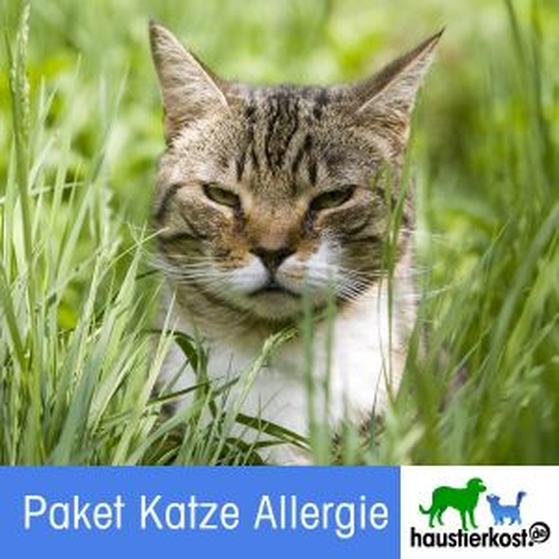 Paket Katze Allergie (Inhalt 9kg)